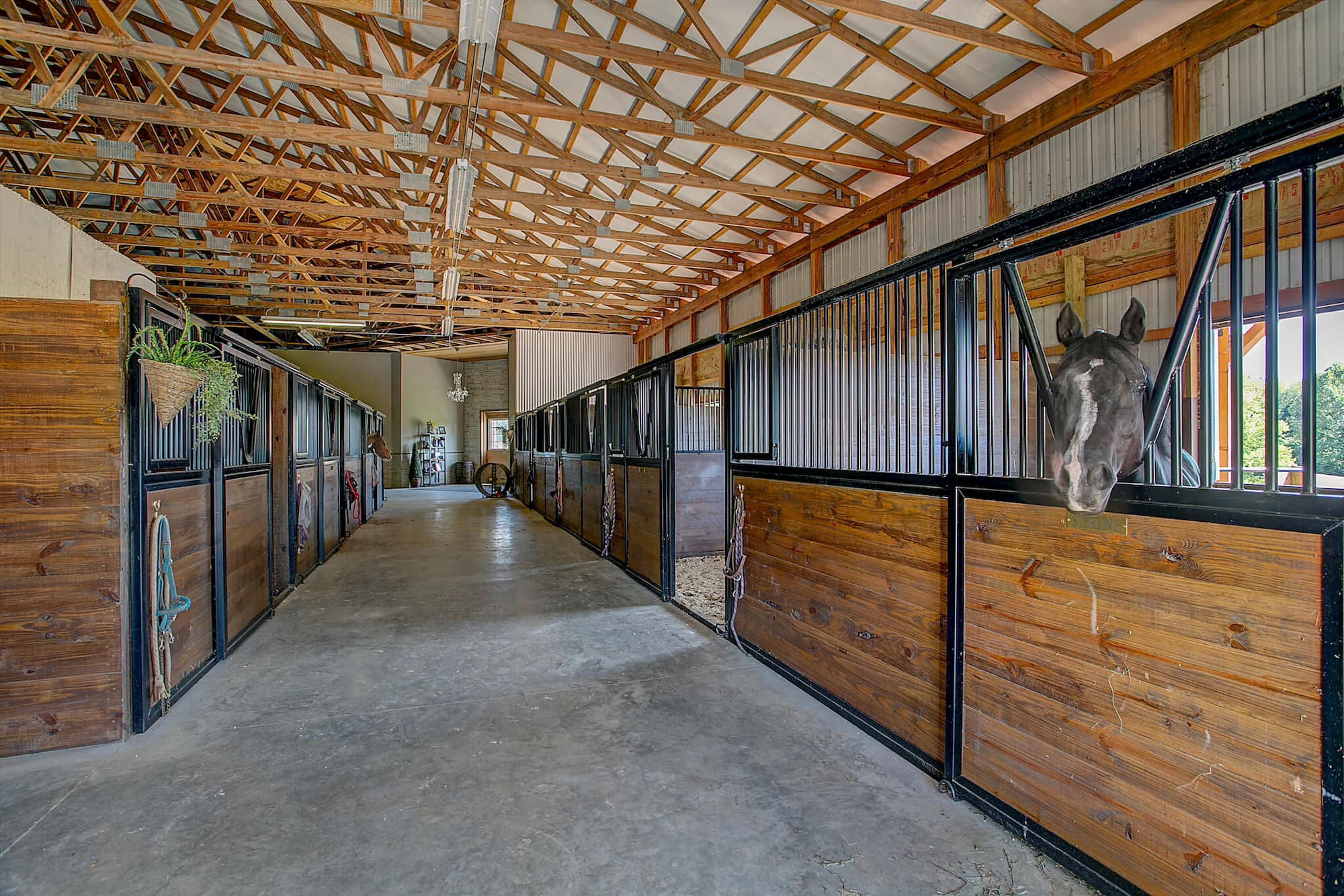 Inside New Equestrian Structure